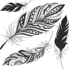 Feather Set Free CDR Vectors Art