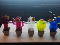 Mini Kaktusy 3d Free CDR Vectors Art