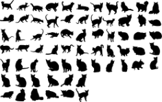Cats Collection Vector Silhouette Free CDR Vectors Art