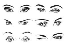 Female Eye Free CDR Vectors Art