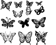Butterfly Set Free CDR Vectors Art