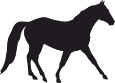 Horse Silhouette Free CDR Vectors Art