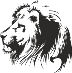 Lion Stencil Free CDR Vectors Art