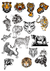 Tiger Vinyl Wall Stickers Free CDR Vectors Art