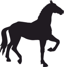 Decal Horse Walks Silhouette Free CDR Vectors Art