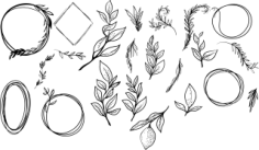 Branch Vector Set Free CDR Vectors Art