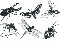 Monochrome insect Free CDR Vectors Art