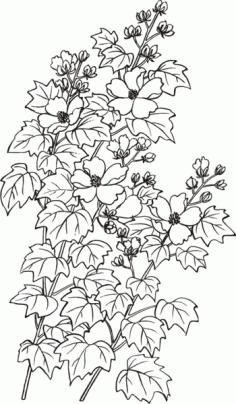 baimiao hibiscus flowers Free CDR Vectors Art