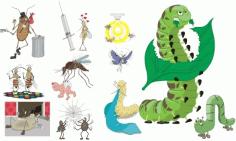 Insect cartoon-179851 Free CDR Vectors Art