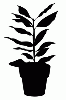 House Plant 6 Free DXF File
