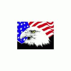 Usa Flag And Eagle Free DXF File
