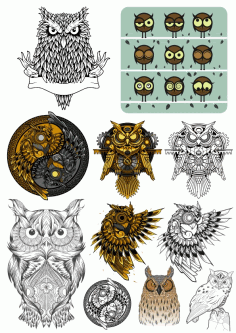 Owl Bird Vector Set Free CDR Vectors Art