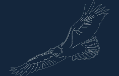 Eagle Flying Sketch Sticker Free DXF File