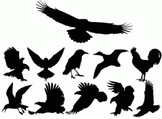 collection of Birds Silhouettes Free CDR Vectors Art