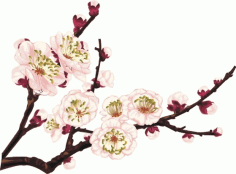 Cherry blossom icon design closeup Free CDR Vectors Art
